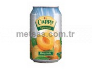 Cappy Meyve Suyu Kayısı Kutu 330ml 24'lü Koli