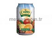 Cappy Meyve Suyu Karışık Kutu 330ml 24'lü Koli